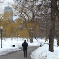 Where to walk in winter in Boston