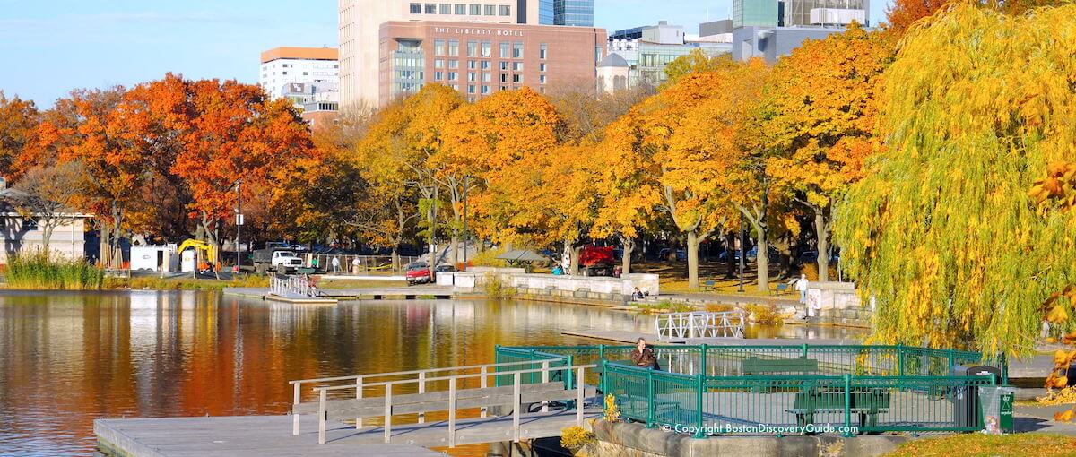 10 reasons to love Boston - Golden foliage along Boston's Esplanade