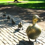 Top 10 Boston Attractions