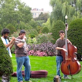 Musicians in Boston's Public Garden