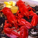 Boston Seafood Restaurants