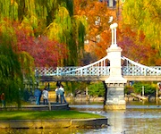 Photo of Public Garden foliage view from Four Seasons Boston