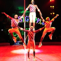 Boston March Events - Big Apple Circus
