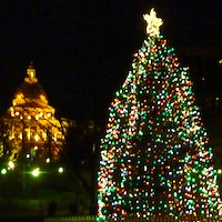 Christmas Tree in Boston Common - Massachusetts State House in Background