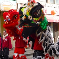 Photo of Lion Dance for Chinese New Year in Boston, MA