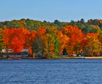 Photo of fall foliage along Maine's coastline