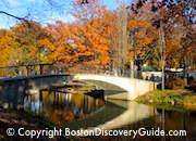 Boston events for November