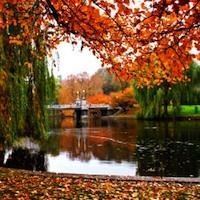 Boston's Public Garden in autumn