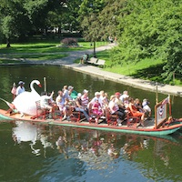 Photo of Swan Boats in Boston's Public Garden