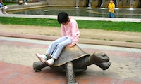 Photo of Boston's Copley Square /  www.boston-discovery-guide.com