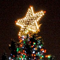Top of Christmas Tree in Boston Common