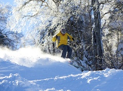 Photo of Skiing at Mount Snow Ski Area near Boston