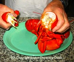 Preparing lobster meat for lobster roll / Lobster Roll Recipe - www.boston-discovery-guide.com