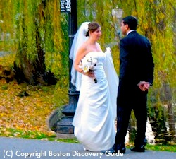 Wedding in Boston's Public Garden