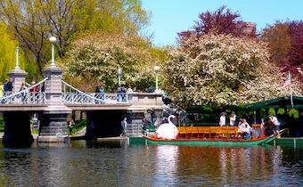 Four seasons boston hotel overlooks boston public garden - Hotels near boston public garden ...