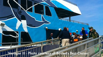Voyager III - Discount Whale Watch tickets