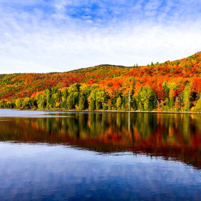 Fall foliage cruises leaving from Boston