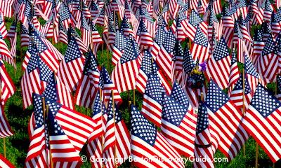 Garden of Flags in Boston
