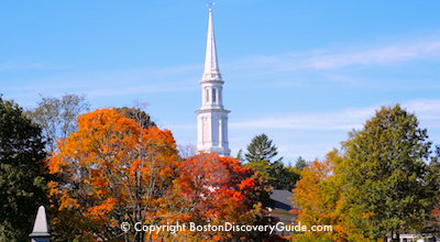 Fall foliage tours in Boston - colorful leaves