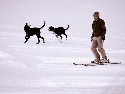 New England ski areas include Vermont's Cochran's Ski Area