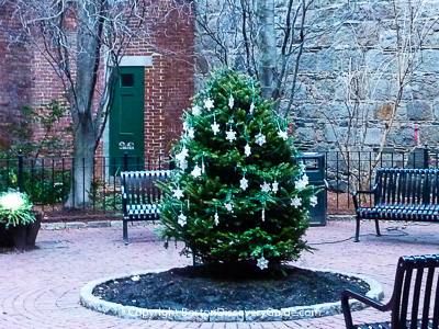 Christmas tree in Boston's Beacon Hill