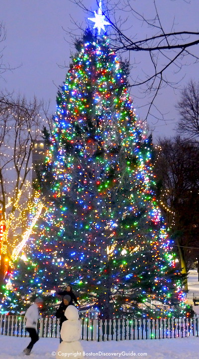 boston christmas tree lighting events schedule 2018 boston discovery guide