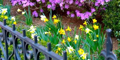 Top April events in Boston