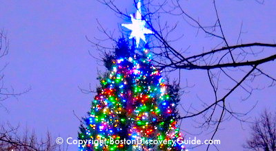 Things to Do in Boston in December