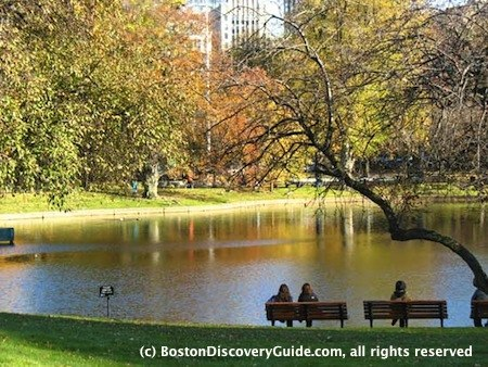 Boston Weather in November: Lagoon in Boston's Public Garden, photographed on Nov 7