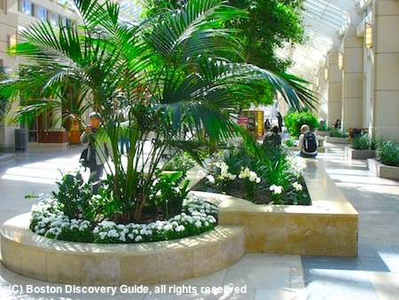 Photo of Prudential Center's winter garden