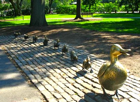 Make Way for Ducklings statues in Boston Public Garden