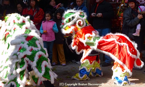 Top Boston Event in February - Chinese New Year's Parade - Lion Dance