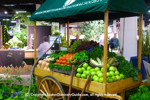 Boston Flower and Garden Show Vegetable Exhibit