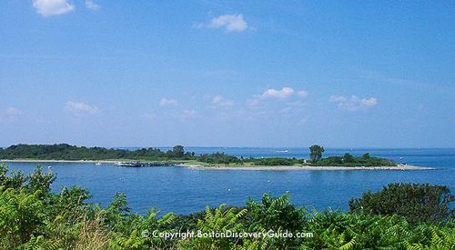 Harbor Island Cruises