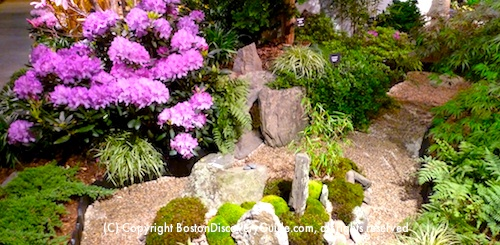 Boston Flower and Garden Show Exhibit