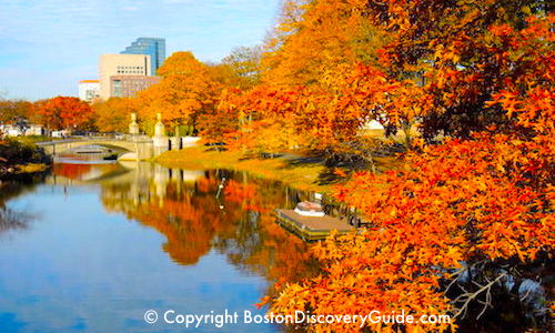 Fall Foliage in Boston