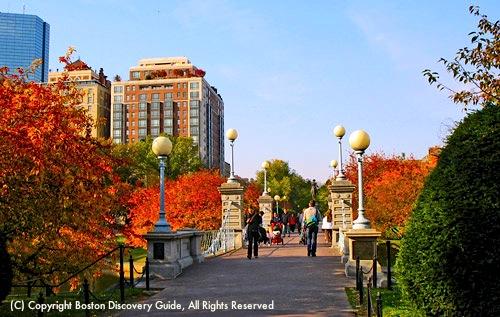 Walking in Boston's Public Garden in early November / Fun things to do in Boston in November / www.boston-discovery-guide.com