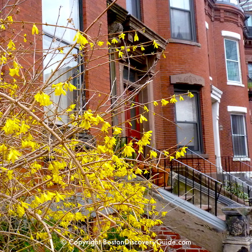 Boston neighborhoods:  Victorian era red brick row houses in the South End