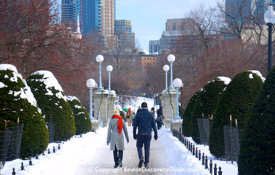 Boston Event Calendar January - Snow and Sledding on Boston Common