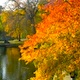 October Events in Boston - Columbus Day Parade, Halloween, Head of the Charles