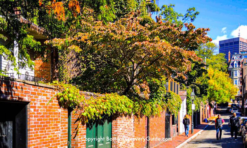 Fall foliage colors along a narrow lane in Boston's historic Beacon Hill