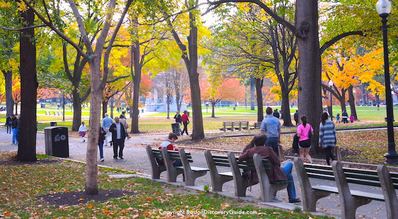 Top 10 Boston Activities for November Fall foliage in Boston Common
