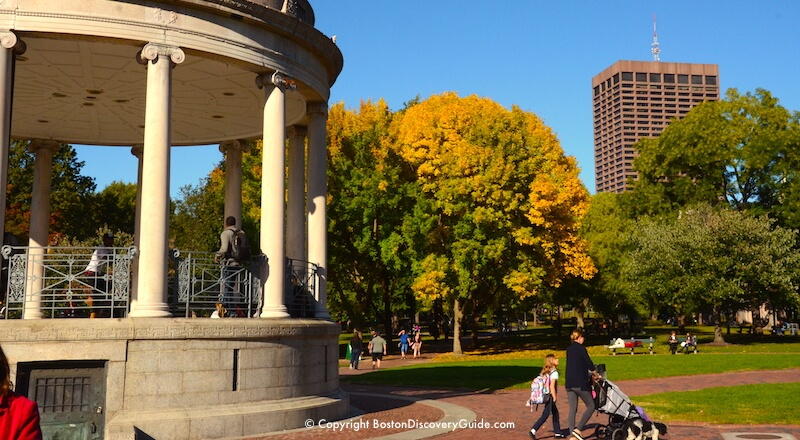 Golden foliage in Boston Common near the bandstand