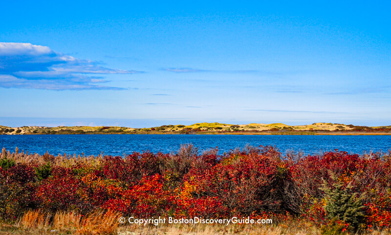 Fall Foliage Tours 2019 - Boston and New England - Boston Discovery
