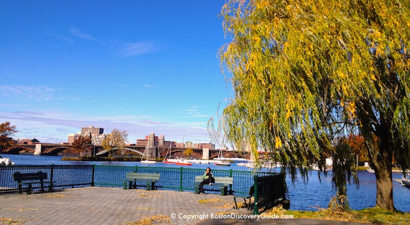 November fall foliage along Boston's Esplanade overlooking the Charles River