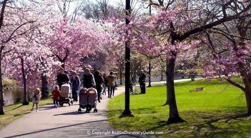 Boston April Events