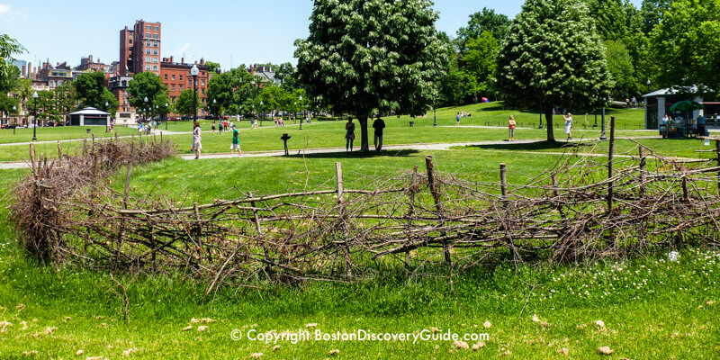 The annual recreation of an ancient Native American fish weir on Boston Common on Memorial Day Weekend