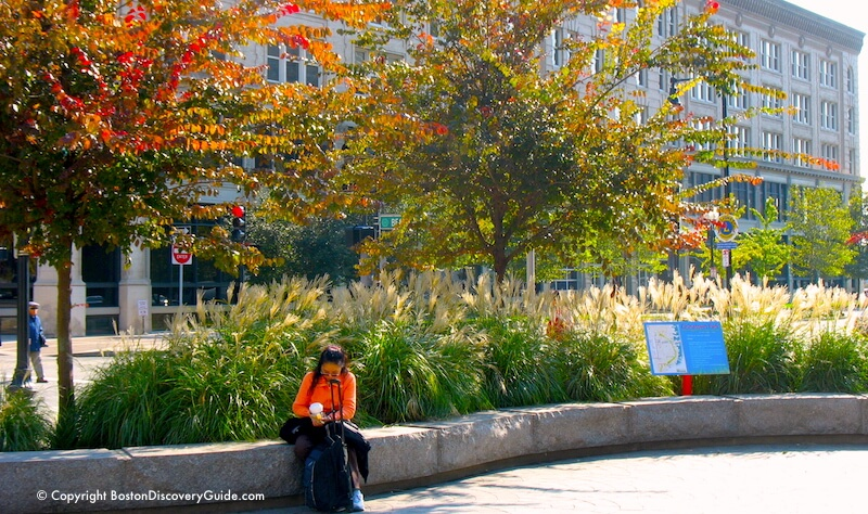 Crimson leaves and golden ornamental grass along the Chinatown section of the Greenway