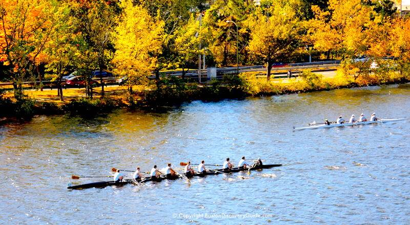 Crew teams with fall foliage along Storrow Drive in the background