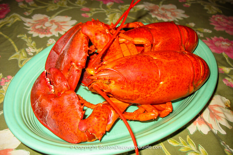 Freshly cooked lobsters on a platter